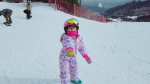 사이드컷 포토갤러리 국내 최다 경험 보유 스키강습팀 사이드컷